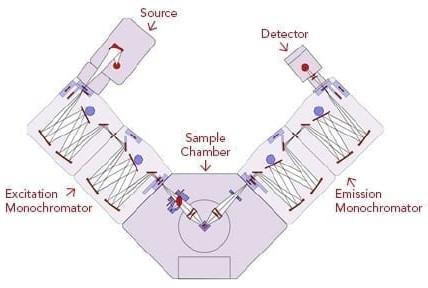 Layout of Photoluminescence Spectrometer for fluorescence measurements.