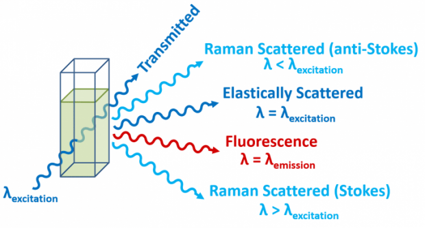 Fluorescence, elastic scattering and Raman scattering processes