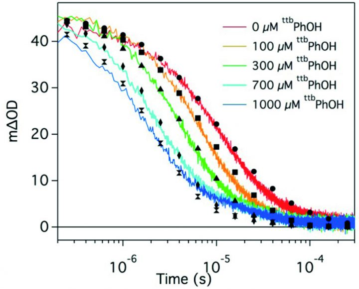 Proton-Coupled Electron Transfer (PCET); Spectral and Kinetic Transient Absorption Analysis of Acridine Orange with Tri-Tert-Butylphenol