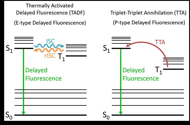 Delayed Fluorescence Jablonski Diagram