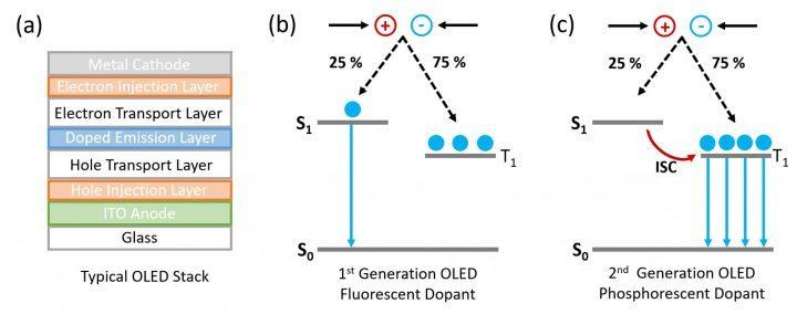 Phosphorescent Organic Light Emitting Diode  Pholed