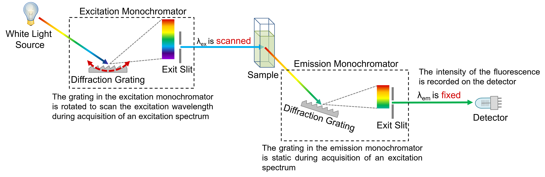 Emission Spectra: excitation spectra spectrofluorometer diagram