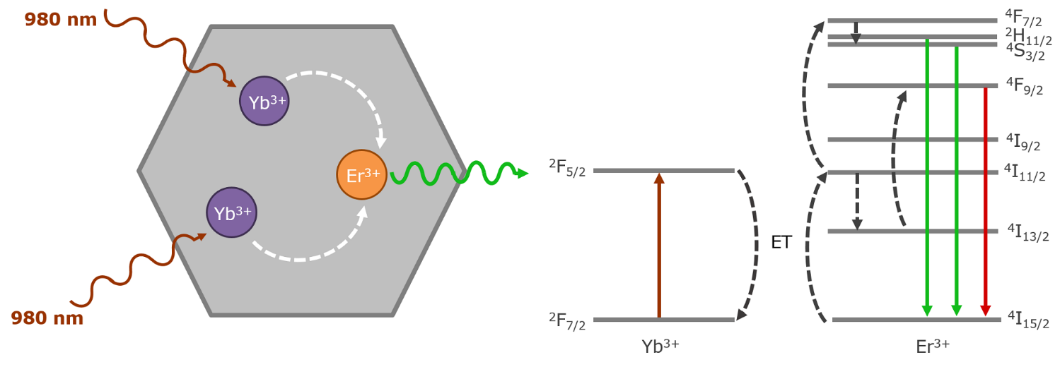 Photon Upconversion | Triplet Triplet Annihilation | Excited State Absorption