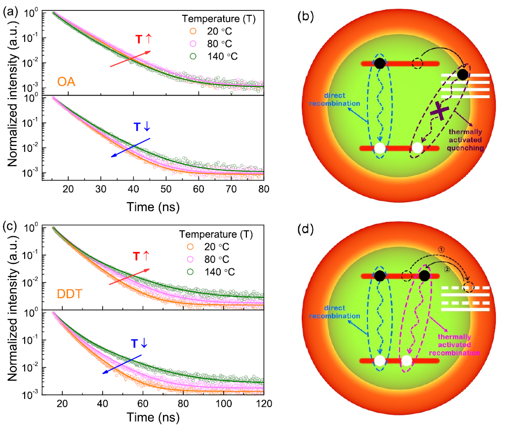 Quantum dot photoluminescence spectra | QLED