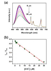 Figure 1. (a) Fluorescence emission spectra from the Eu/BPyDC MOF studied under different concentrations of hypochlorite, acquired in an FS5 Spectrofluorometer. (b) Ratiometric fluorescence calibration curve obtained from the data in (a).