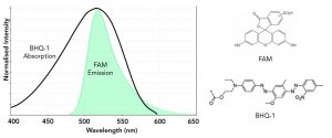 COVID-19 Disease Testing Utilising Fluorescence
