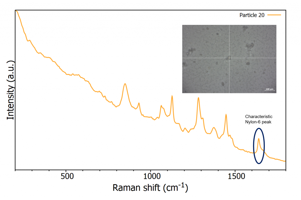 Raman spectra of nylon-6 on nitrocellulose filter