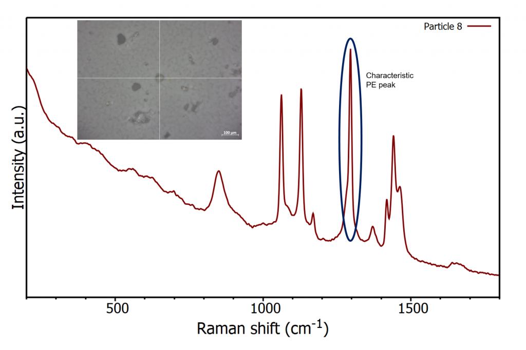 Raman spectra of polyethylene on nitrocellulose filter