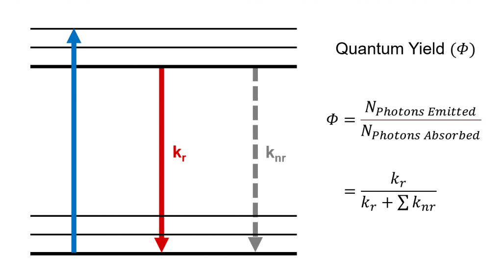 Quantum yield and radiative and non-radiative decay processes.